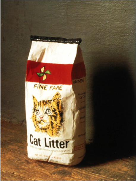Robert Gober, Cat litter
