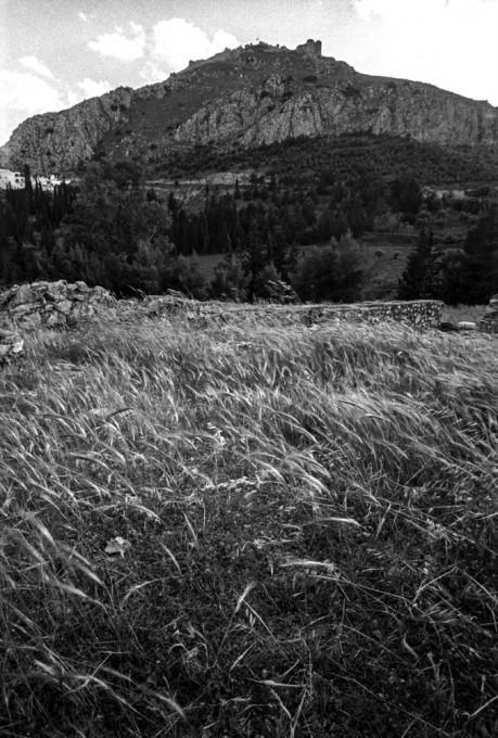 Άργος, φεστιβάλ «Διεθνής Τόπος», φωτογραφία: Πλάτων Ριβέλλης
