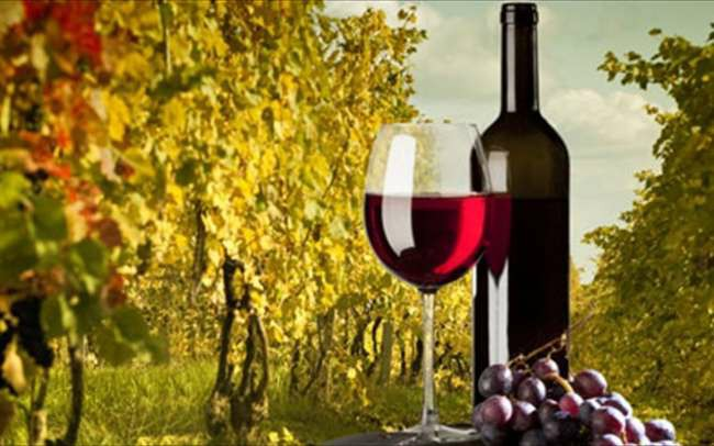 Οινοξένεια κρασί